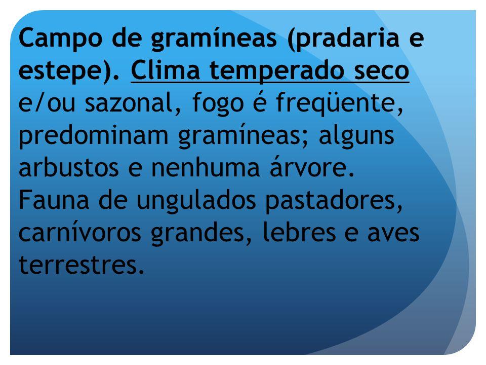 Campo de gramíneas (pradaria e estepe). Clima temperado seco e/ou sazonal, fogo é freqüente, predominam gramíneas; alguns arbustos e nenhuma árvore. F