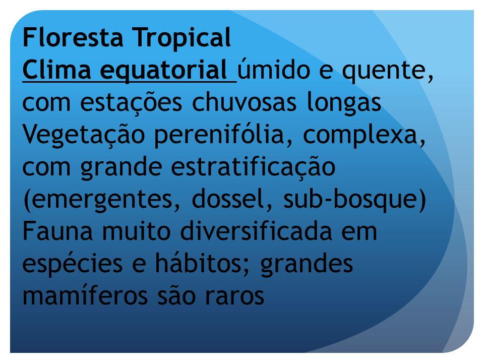 Floresta Tropical Clima equatorial úmido e quente, com estações chuvosas longas Vegetação perenifólia, complexa, com grande estratificação (emergentes