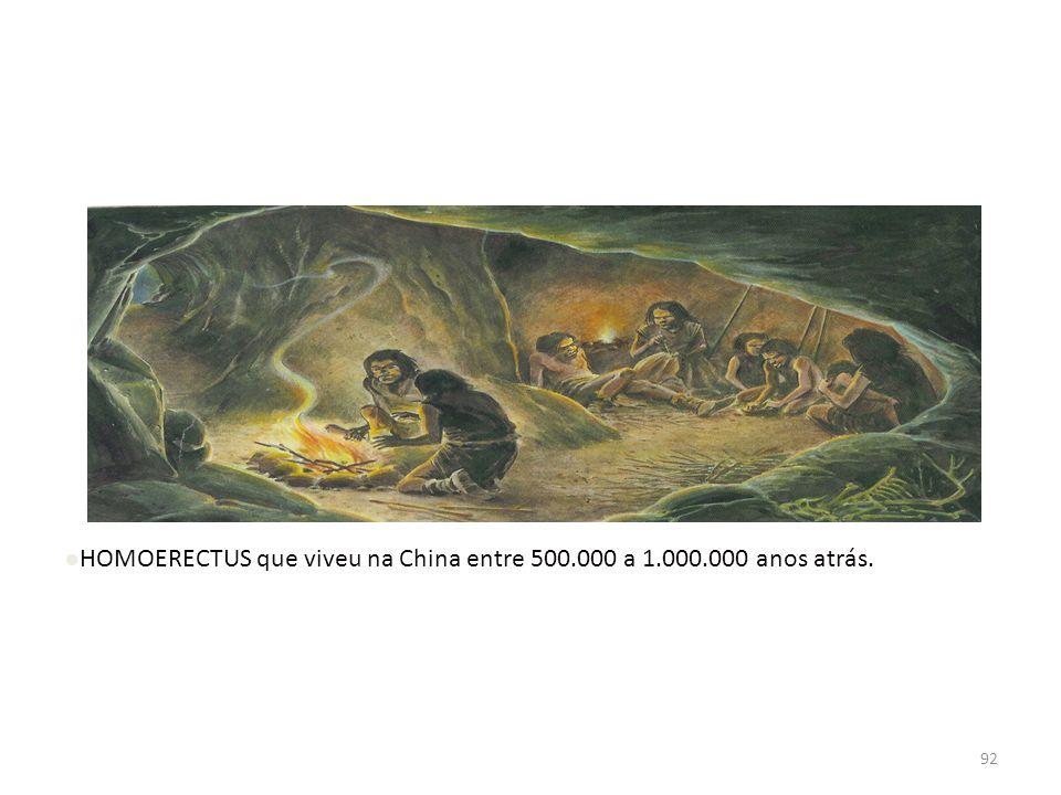 91 INTRODUÇÃO Segundo pesquisas arqueológicas, o primeiro homem a utilizar o fogo foi. HOMOERECTUS que viveu na China entre 500.000 a 1.000.000 anos a