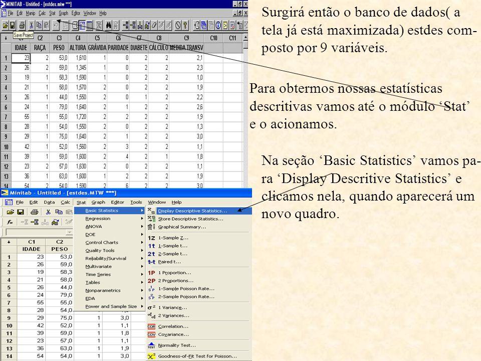 Surgirá então o banco de dados( a tela já está maximizada) estdes com- posto por 9 variáveis. Para obtermos nossas estatísticas descritivas vamos até