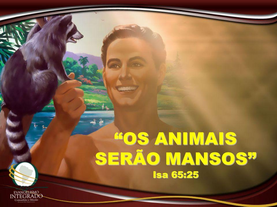 """""""OS ANIMAIS SERÃO MANSOS"""" Isa 65:25"""