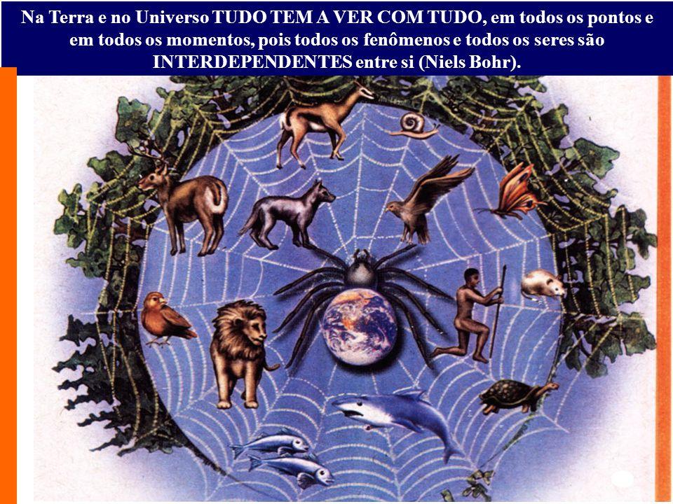Na Terra e no Universo TUDO TEM A VER COM TUDO, em todos os pontos e em todos os momentos, pois todos os fenômenos e todos os seres são INTERDEPENDENTES entre si (Niels Bohr).