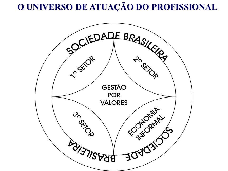 O UNIVERSO DE ATUAÇÃO DO PROFISSIONAL