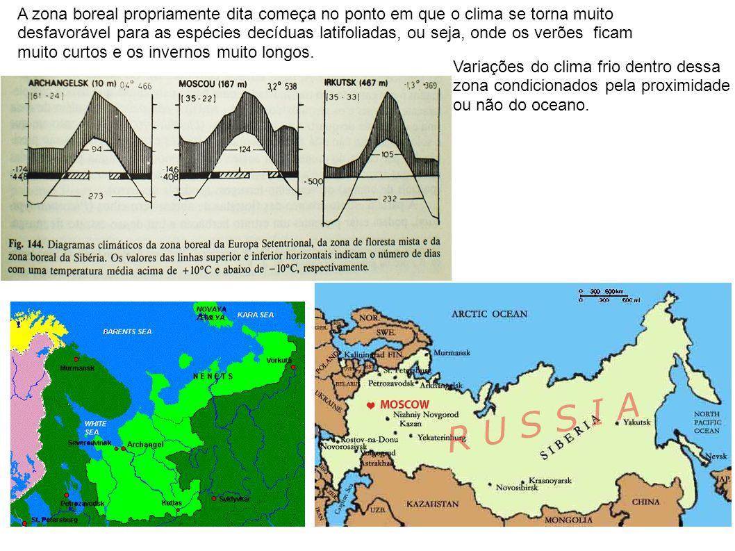 A zona boreal propriamente dita começa no ponto em que o clima se torna muito desfavorável para as espécies decíduas latifoliadas, ou seja, onde os ve