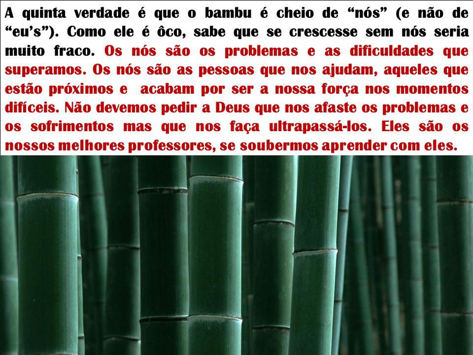 A quarta verdade que o bambu nos ensina é não criarmos galhos. Como tem a meta no alto e vive em grupo, o bambu não tem galhos. Perdemos muito tempo n
