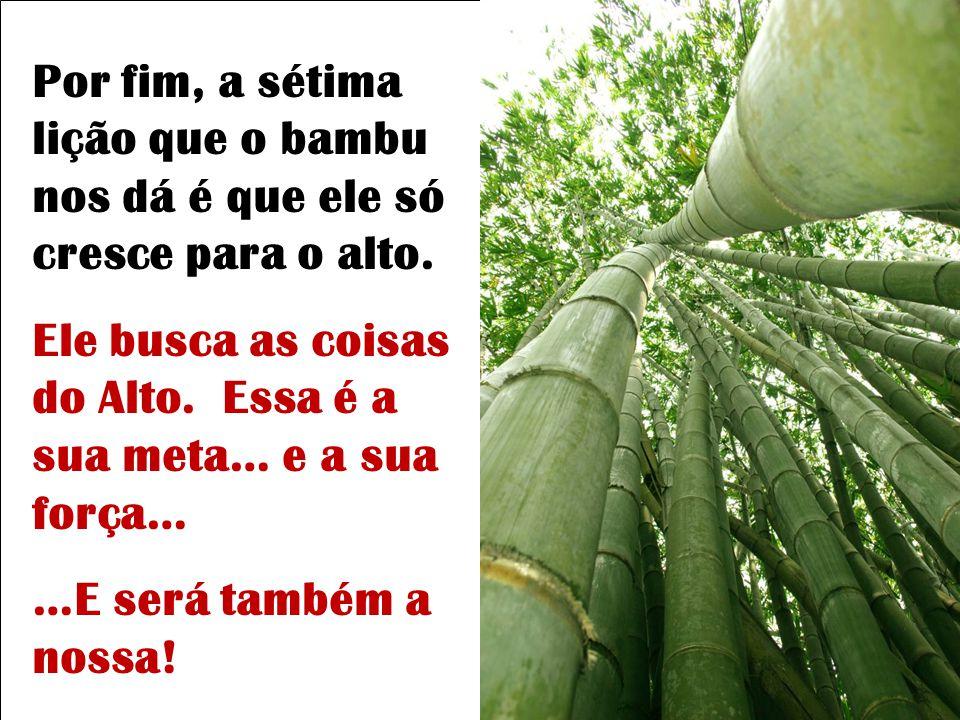 A sexta verdade é que o bambu é ôco, vazio de si mesmo. Enquanto não nos esvaziar- mos de tudo aquilo que nos preenche… que rouba o nosso tempo, que t
