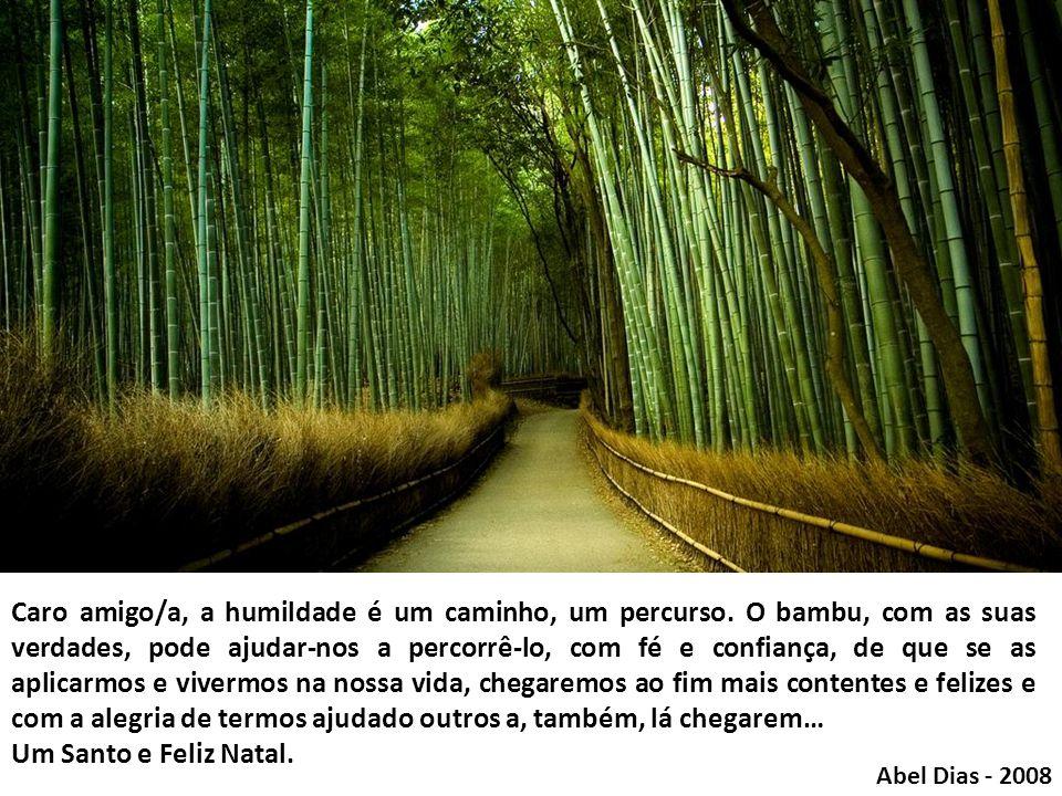 Por fim, a sétima lição que o bambu nos dá é que ele só cresce para o alto. Ele busca as coisas do Alto. Essa é a sua meta… e a sua força… …E será tam