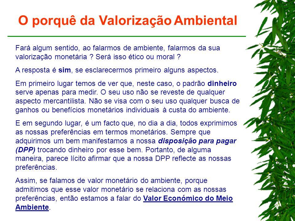 O porquê da Valorização Ambiental Fará algum sentido, ao falarmos de ambiente, falarmos da sua valorização monetária .