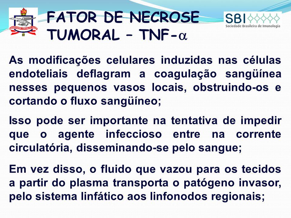 FATOR DE NECROSE TUMORAL – TNF-  As modificações celulares induzidas nas células endoteliais deflagram a coagulação sangüínea nesses pequenos vasos locais, obstruindo-os e cortando o fluxo sangüíneo; Isso pode ser importante na tentativa de impedir que o agente infeccioso entre na corrente circulatória, disseminando-se pelo sangue; Em vez disso, o fluido que vazou para os tecidos a partir do plasma transporta o patógeno invasor, pelo sistema linfático aos linfonodos regionais;