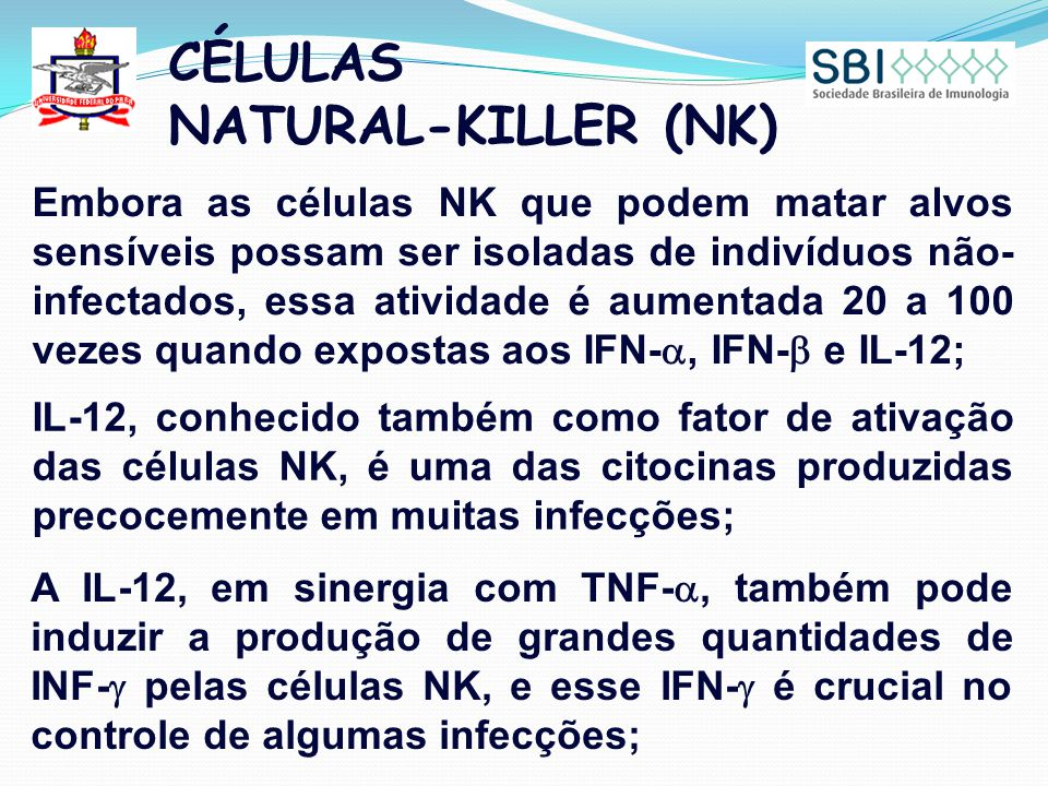 CÉLULAS NATURAL-KILLER (NK) Embora as células NK que podem matar alvos sensíveis possam ser isoladas de indivíduos não- infectados, essa atividade é a