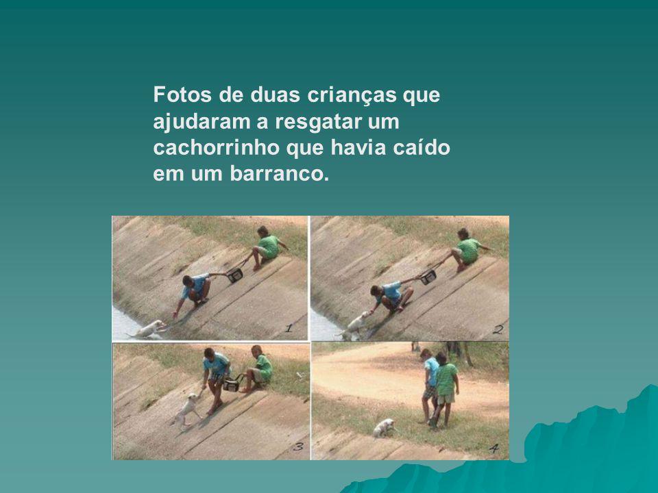 Fotos de duas crianças que ajudaram a resgatar um cachorrinho que havia caído em um barranco.
