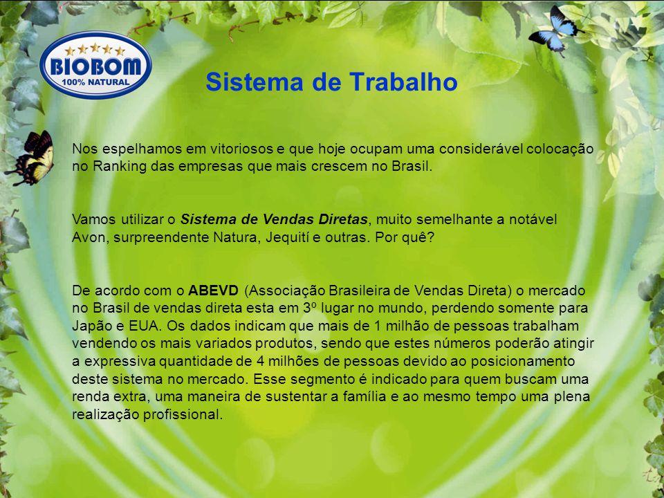 Sistema de Trabalho Nos espelhamos em vitoriosos e que hoje ocupam uma considerável colocação no Ranking das empresas que mais crescem no Brasil.