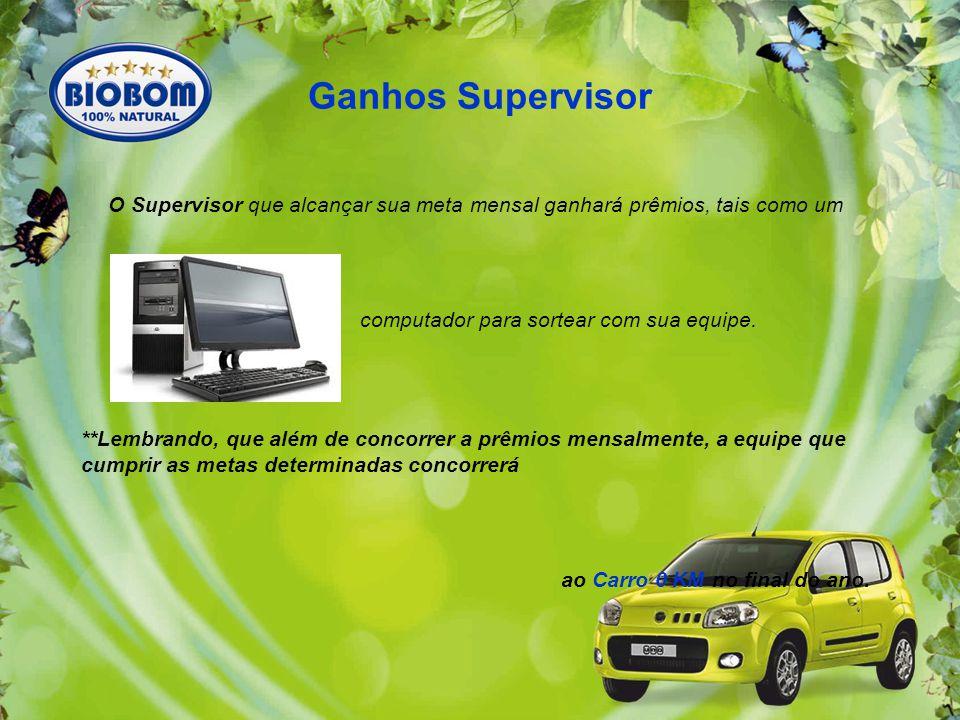 O Supervisor que alcançar sua meta mensal ganhará prêmios, tais como um computador para sortear com sua equipe.