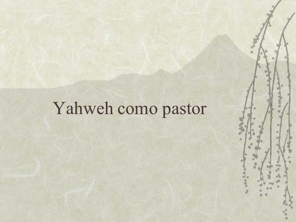  a) O pastor que guia  Aqui aparece a idéia de que o pastor é aquele que caminha à frente de suas ovelhas, abrindo e mostrando o caminho.