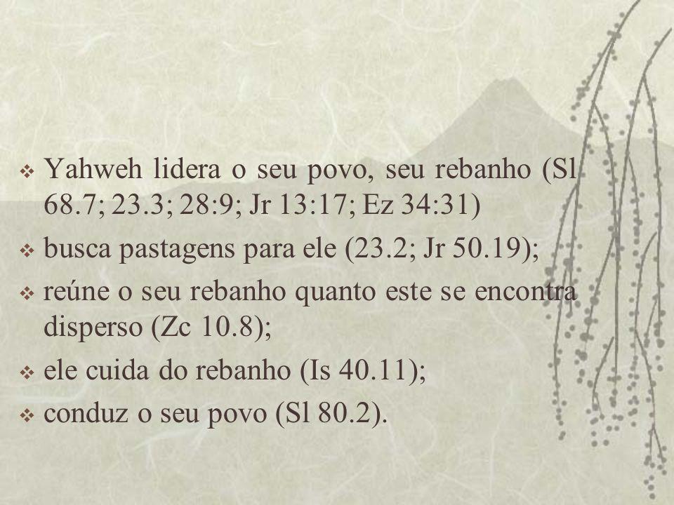  Yahweh lidera o seu povo, seu rebanho (Sl 68.7; 23.3; 28:9; Jr 13:17; Ez 34:31)  busca pastagens para ele (23.2; Jr 50.19);  reúne o seu rebanho quanto este se encontra disperso (Zc 10.8);  ele cuida do rebanho (Is 40.11);  conduz o seu povo (Sl 80.2).