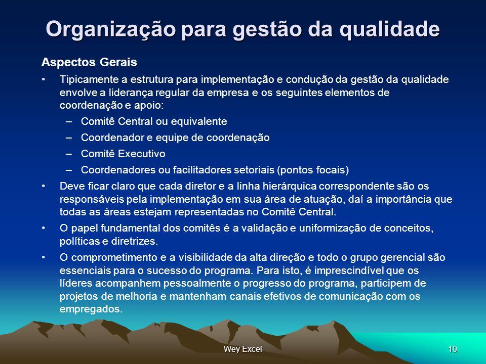 Wey Excel10 Organização para gestão da qualidade Aspectos Gerais Tipicamente a estrutura para implementação e condução da gestão da qualidade envolve