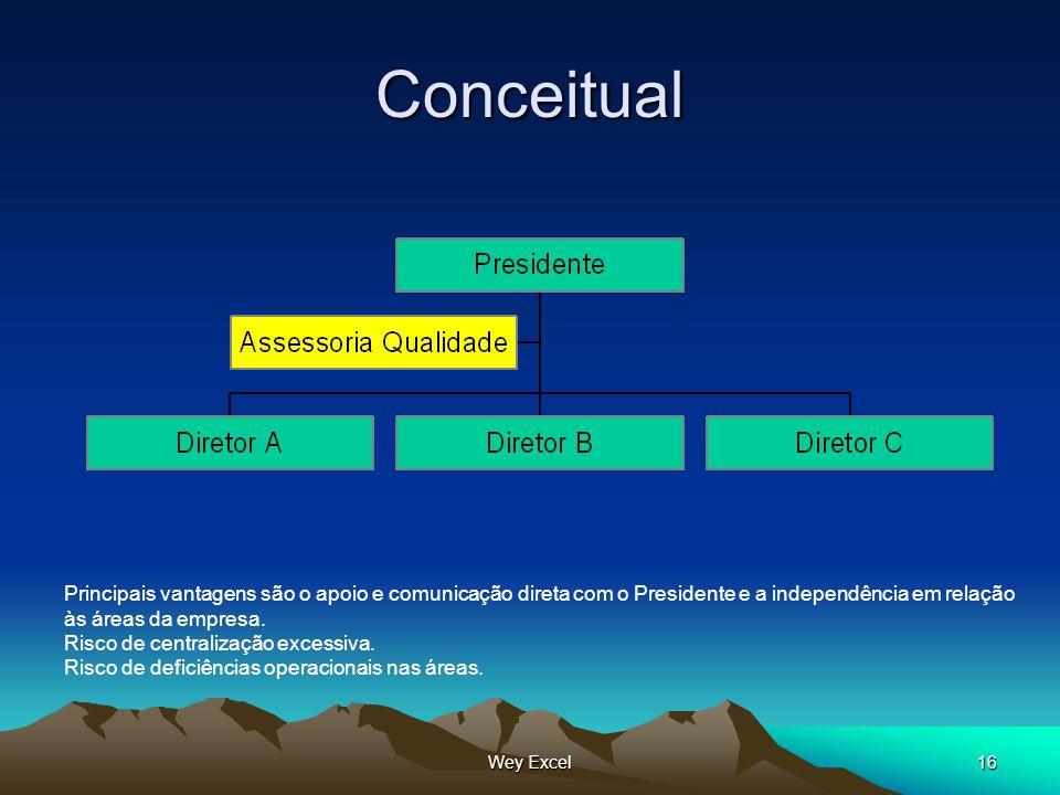 Wey Excel16 Conceitual Principais vantagens são o apoio e comunicação direta com o Presidente e a independência em relação às áreas da empresa. Risco