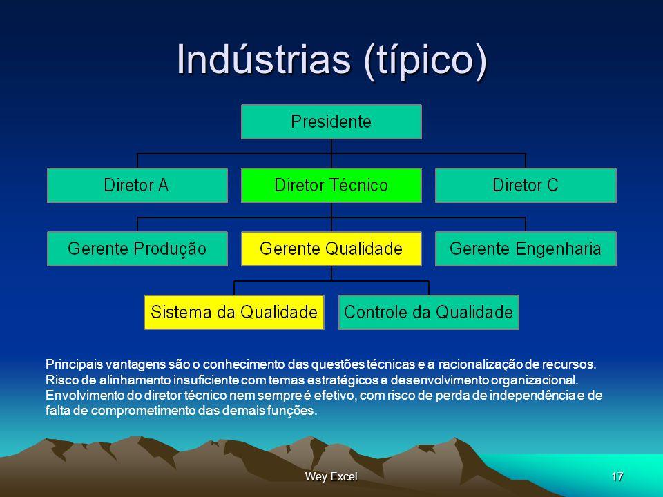 Wey Excel17 Indústrias (típico) Principais vantagens são o conhecimento das questões técnicas e a racionalização de recursos. Risco de alinhamento ins