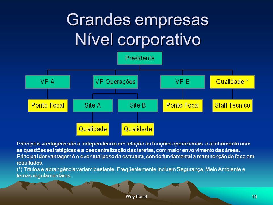 Wey Excel19 Grandes empresas Nível corporativo Principais vantagens são a independência em relação às funções operacionais, o alinhamento com as quest