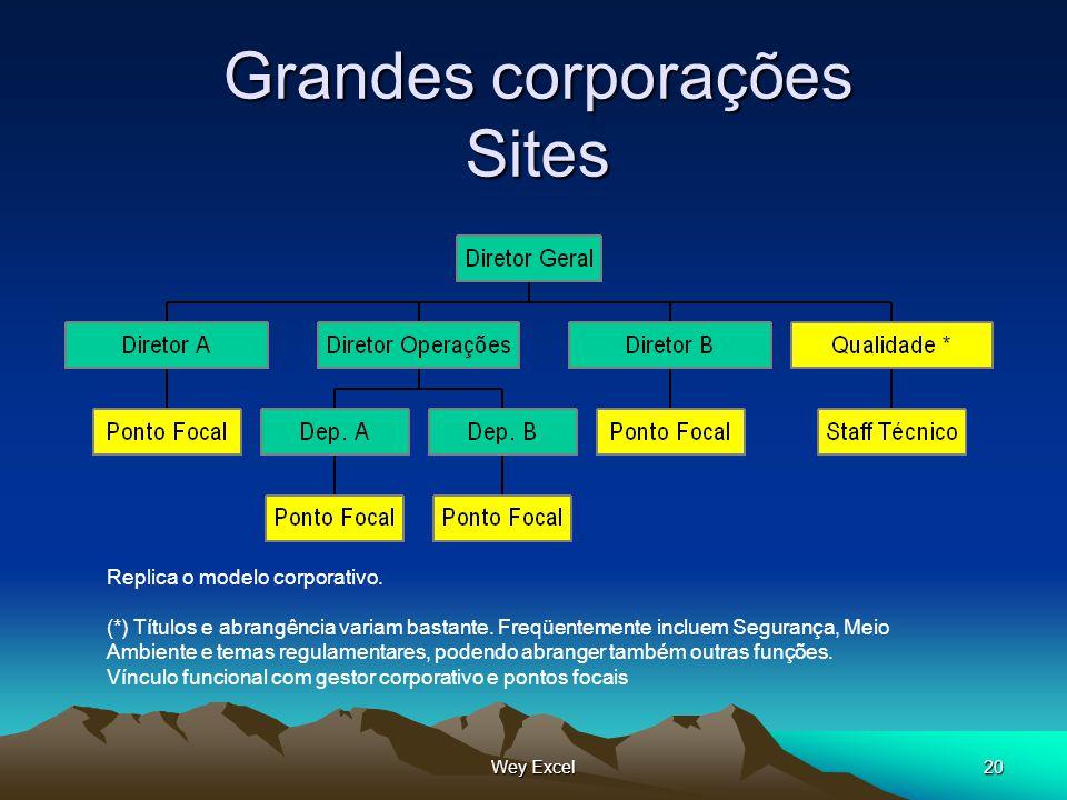Wey Excel20 Grandes corporações Sites Replica o modelo corporativo. (*) Títulos e abrangência variam bastante. Freqüentemente incluem Segurança, Meio