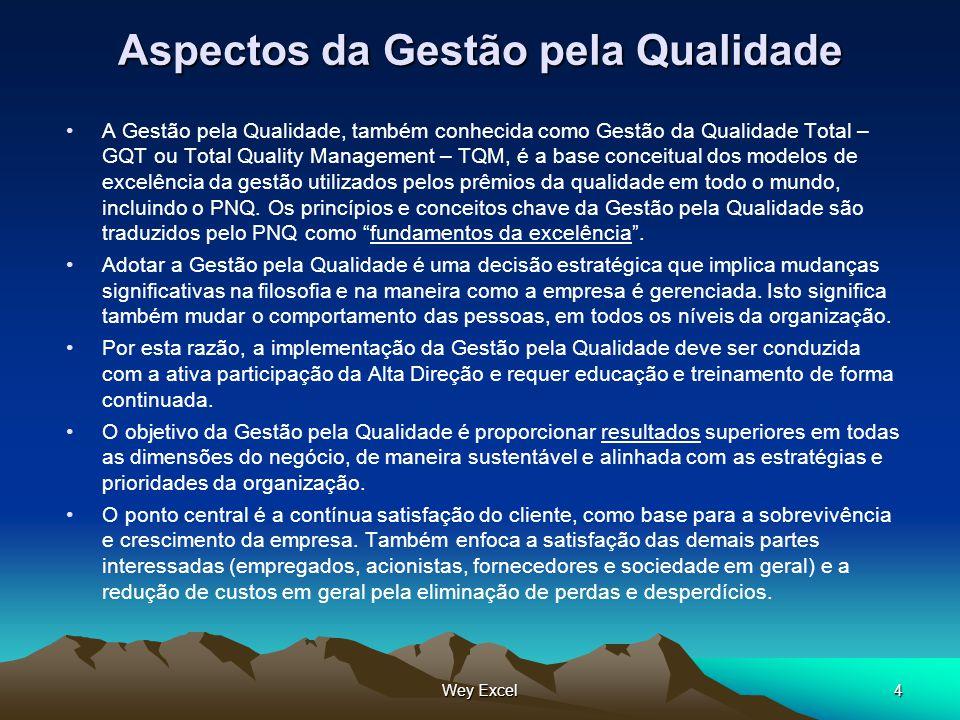 Wey Excel4 Aspectos da Gestão pela Qualidade A Gestão pela Qualidade, também conhecida como Gestão da Qualidade Total – GQT ou Total Quality Managemen