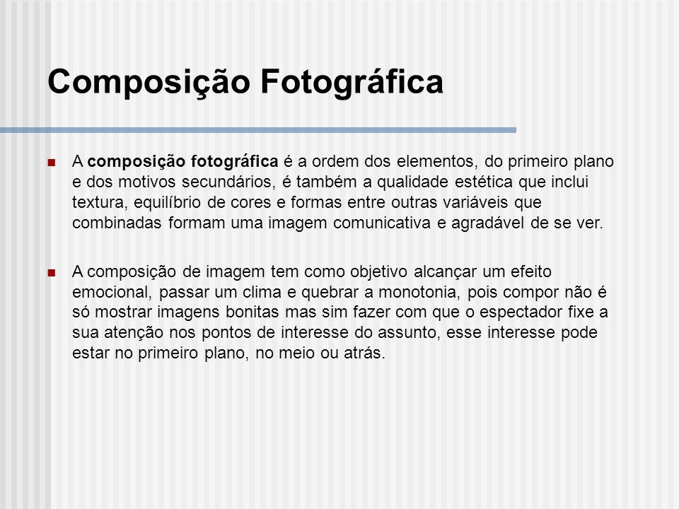 A composição fotográfica é a ordem dos elementos, do primeiro plano e dos motivos secundários, é também a qualidade estética que inclui textura, equil