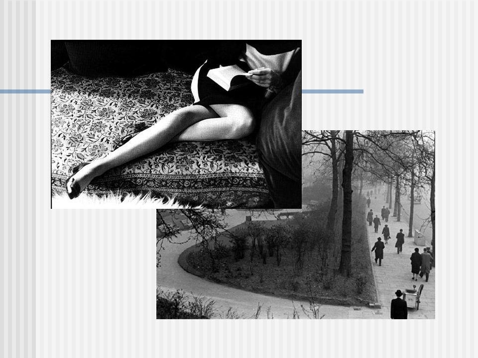 A sobreposição de elementos no motivo tem como objetivo mostrar o aumento da profundidade e da perspectiva, como também convidar à observação dos contrastes no motivo.
