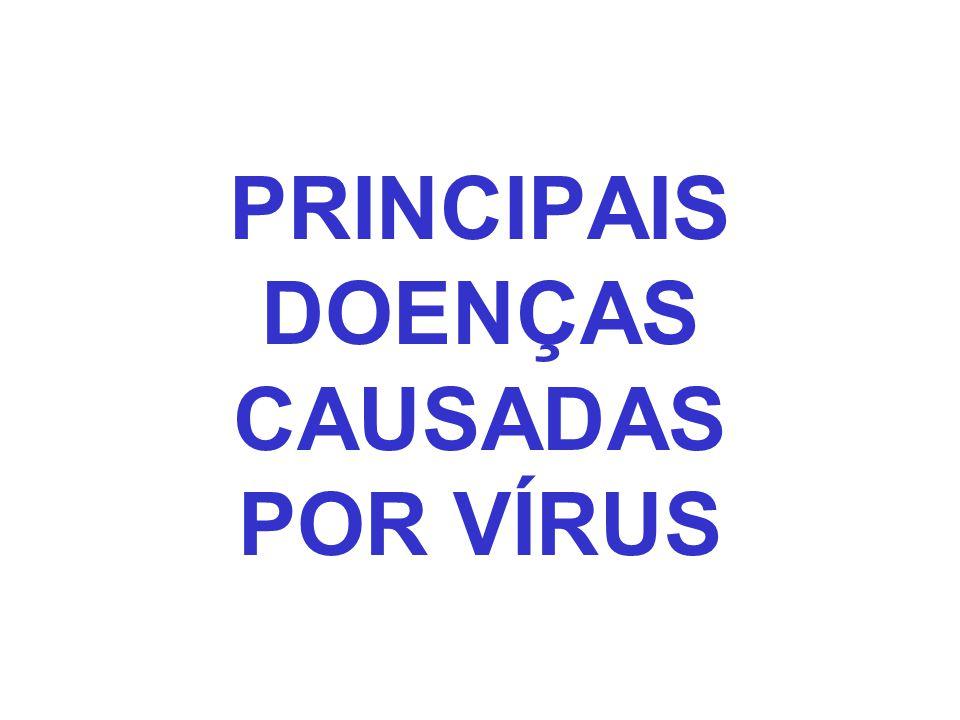 PRINCIPAIS DOENÇAS CAUSADAS POR VÍRUS