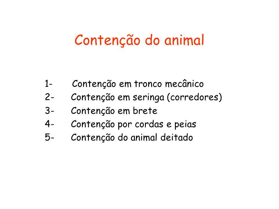 Contenção do animal 1- Contenção em tronco mecânico 2- Contenção em seringa (corredores) 3- Contenção em brete 4- Contenção por cordas e peias 5- Cont