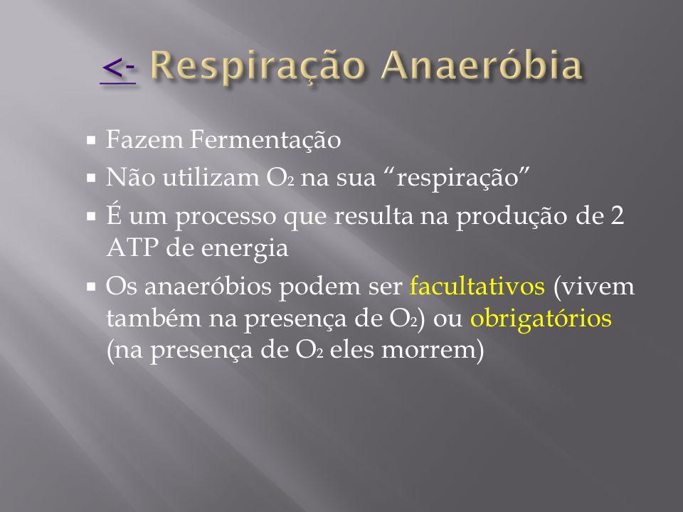 """ Fazem Fermentação  Não utilizam O 2 na sua """"respiração""""  É um processo que resulta na produção de 2 ATP de energia  Os anaeróbios podem ser facul"""