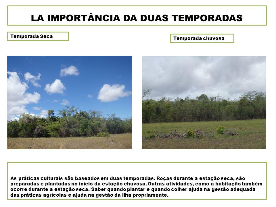 Temporada Seca Temporada chuvosa LA IMPORTÂNCIA DA DUAS TEMPORADAS As práticas culturais são baseados em duas temporadas.