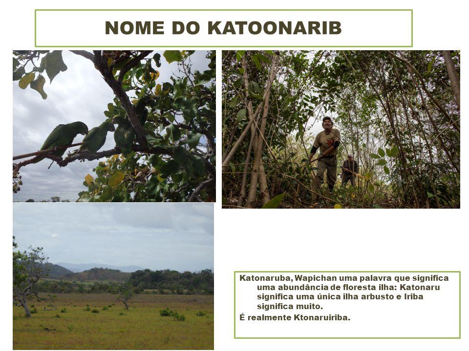 NOME DO KATOONARIB Katonaruba, Wapichan uma palavra que significa uma abundância de floresta ilha: Katonaru significa uma única ilha arbusto e Iriba significa muito.