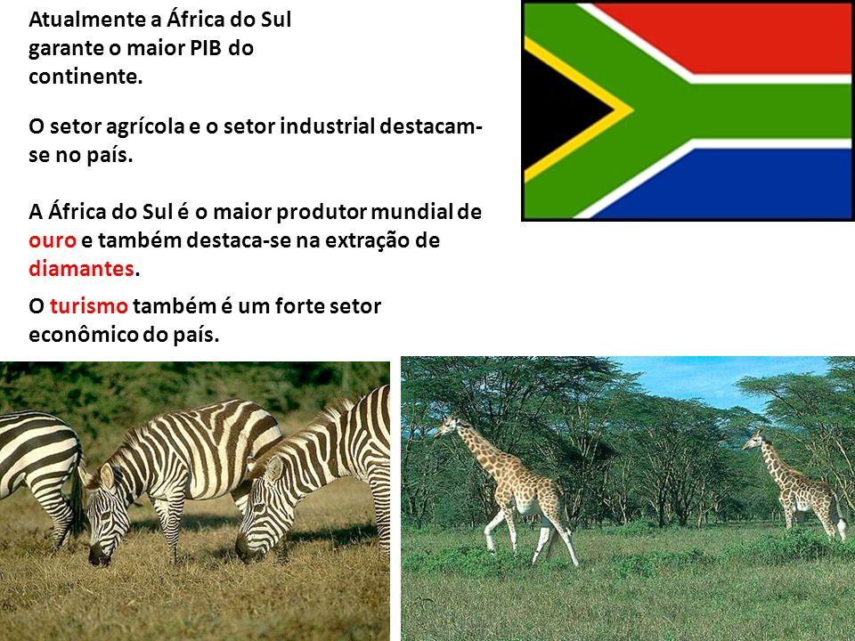 Atualmente a África do Sul garante o maior PIB do continente. O setor agrícola e o setor industrial destacam- se no país. A África do Sul é o maior pr
