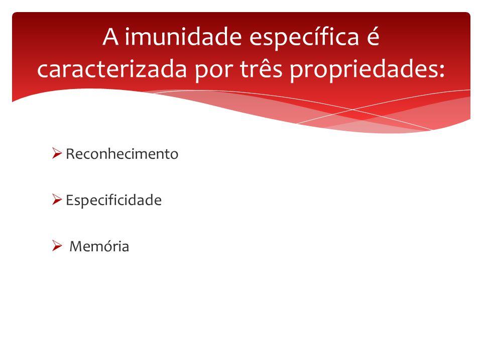  Reconhecimento  Especificidade  Memória A imunidade específica é caracterizada por três propriedades: