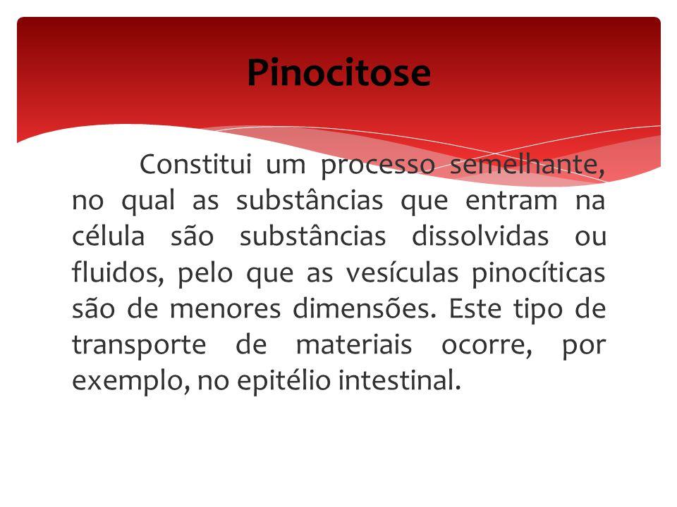 Constitui um processo semelhante, no qual as substâncias que entram na célula são substâncias dissolvidas ou fluidos, pelo que as vesículas pinocítica