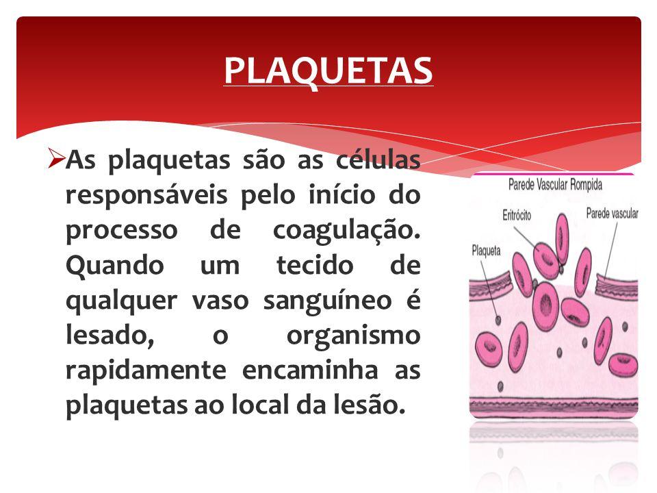  As plaquetas são as células responsáveis pelo início do processo de coagulação. Quando um tecido de qualquer vaso sanguíneo é lesado, o organismo ra