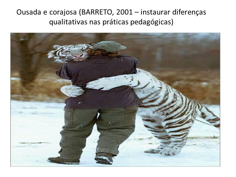 Ousada e corajosa (BARRETO, 2001 – instaurar diferenças qualitativas nas práticas pedagógicas)