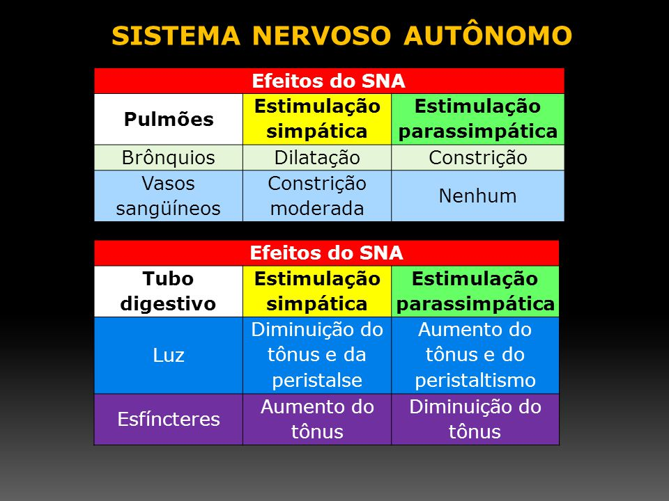Efeitos do SNA Pulmões Estimulação simpática Estimulação parassimpática BrônquiosDilataçãoConstrição Vasos sangüíneos Constrição moderada Nenhum Efeit