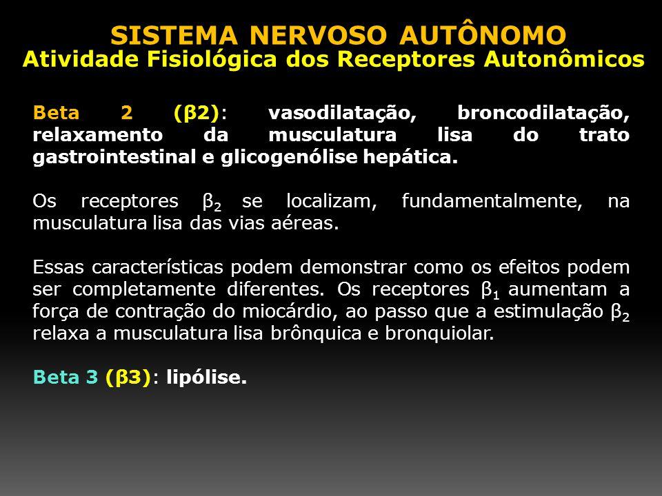 Beta 2 (β2): vasodilatação, broncodilatação, relaxamento da musculatura lisa do trato gastrointestinal e glicogenólise hepática. Os receptores β 2 se