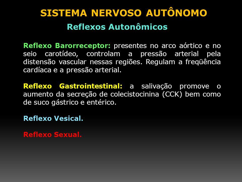 Reflexo Barorreceptor: presentes no arco aórtico e no seio carotídeo, controlam a pressão arterial pela distensão vascular nessas regiões. Regulam a f
