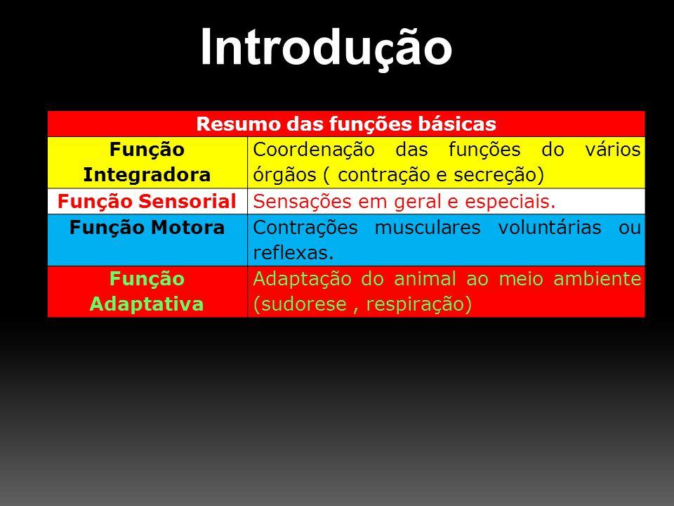 Resumo das funções básicas Função Integradora Coordenação das funções do vários órgãos ( contração e secreção) Função SensorialSensações em geral e es