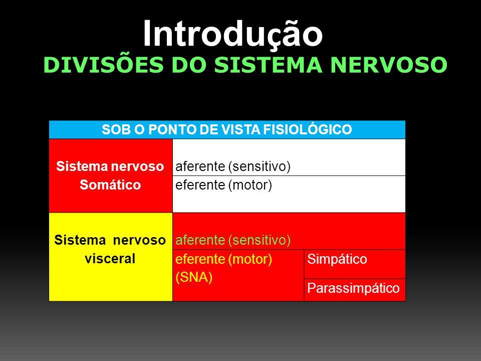 Introdu ç ão DIVISÕES DO SISTEMA NERVOSO SOB O PONTO DE VISTA EMBRIOLÓGICO Prosencéfalo Telencéfalo DiencéfaloTálamo Hipotálamo Cérebro córtex cerebral, núcleos da base, sistema límbico, rinencéfalo Mesencéfalotectum, tegumento e pedúnculos cerebrais Rombencéfalo MetencéfaloCerebelo Ponte MielencéfaloBulbo