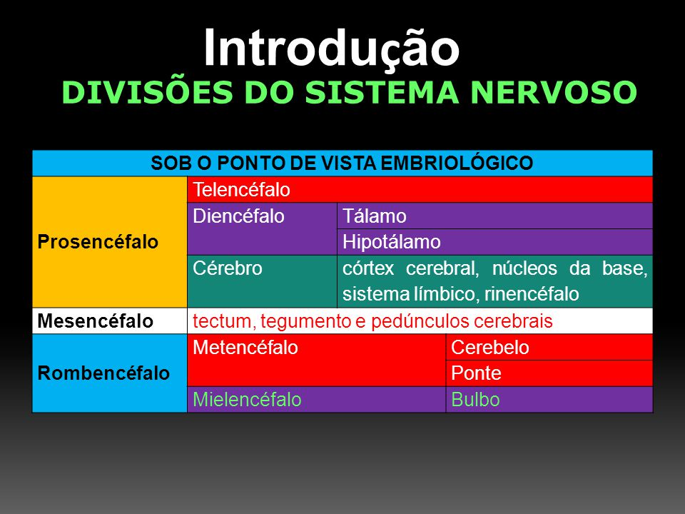 Introdu ç ão DIVISÕES DO SISTEMA NERVOSO SOB O PONTO DE VISTA EMBRIOLÓGICO Prosencéfalo Telencéfalo DiencéfaloTálamo Hipotálamo Cérebro córtex cerebra