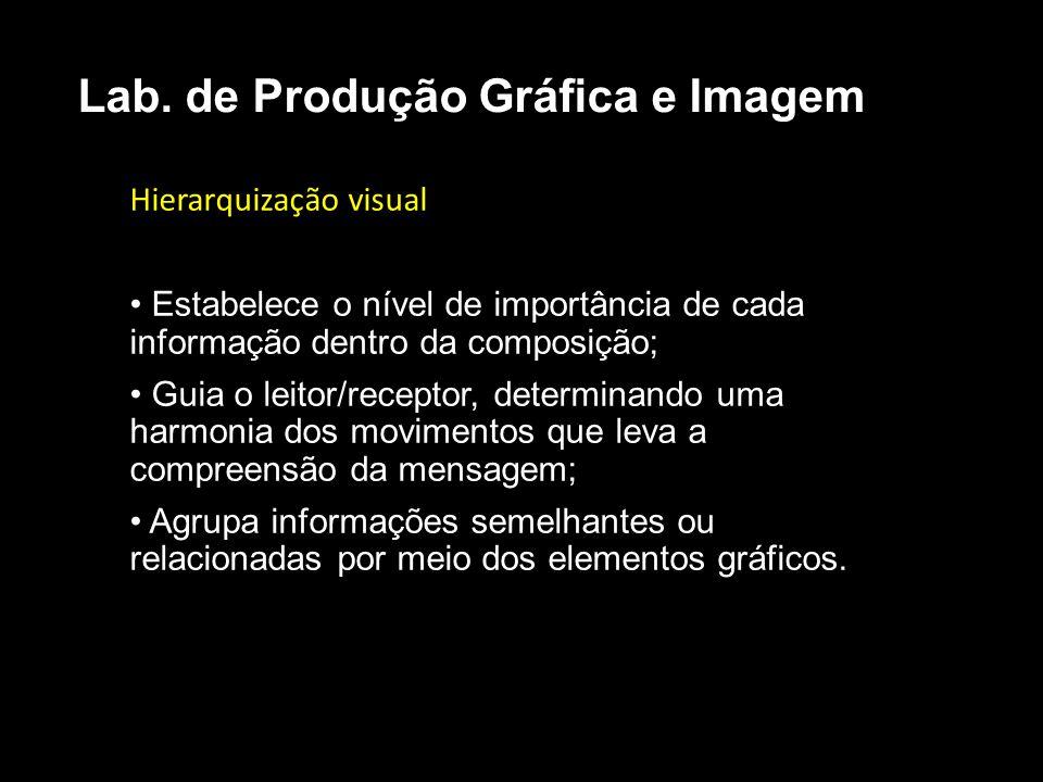 Hierarquização visual Estabelece o nível de importância de cada informação dentro da composição; Guia o leitor/receptor, determinando uma harmonia dos