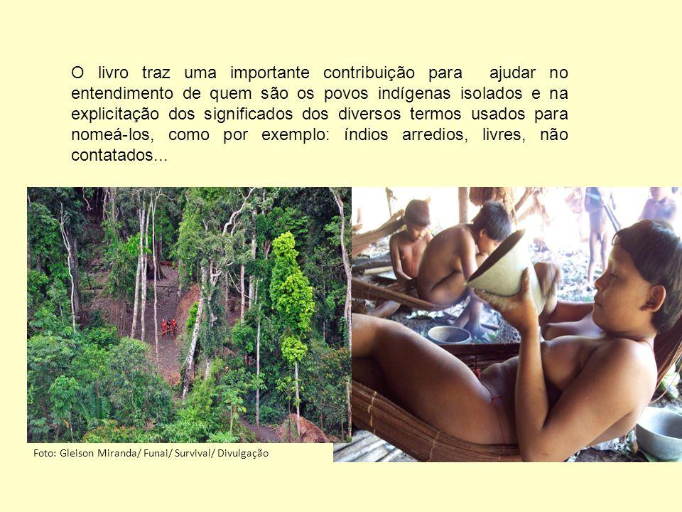 Relaciona 90 referências sobre povos indígenas isolados no Brasil e 37 referências de povos isolados existentes nos demais países Amazônicos e no Chaco Paraguaio.