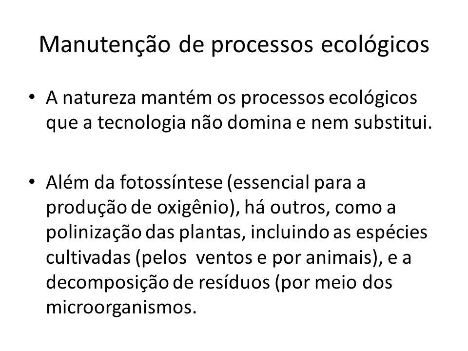 Manutenção de processos ecológicos A natureza mantém os processos ecológicos que a tecnologia não domina e nem substitui. Além da fotossíntese (essenc