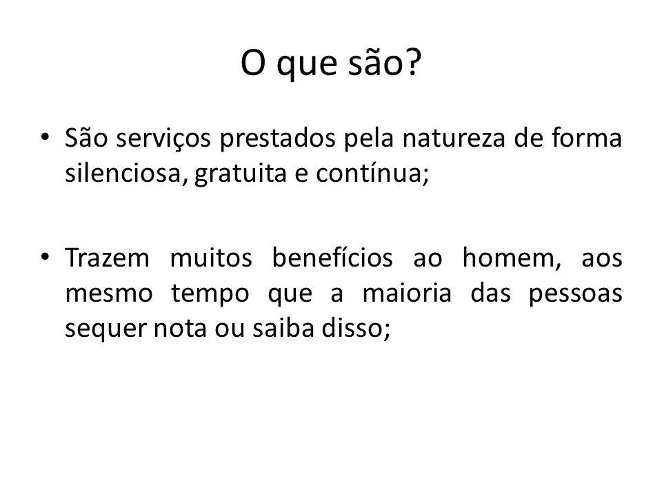 O que são? São serviços prestados pela natureza de forma silenciosa, gratuita e contínua; Trazem muitos benefícios ao homem, aos mesmo tempo que a mai