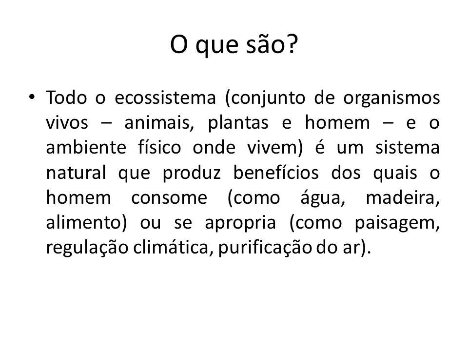O que são? Todo o ecossistema (conjunto de organismos vivos – animais, plantas e homem – e o ambiente físico onde vivem) é um sistema natural que prod
