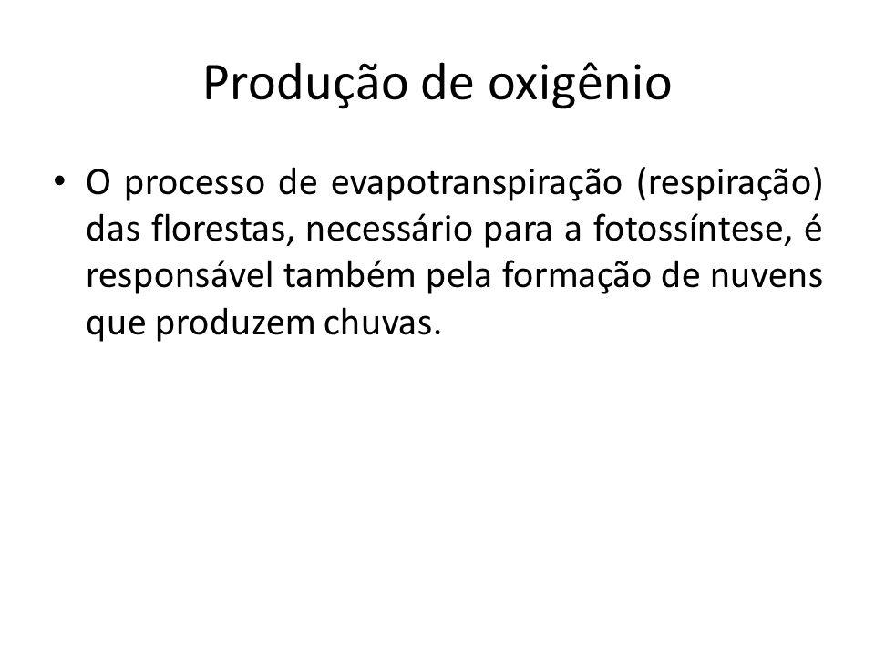 Produção de oxigênio O processo de evapotranspiração (respiração) das florestas, necessário para a fotossíntese, é responsável também pela formação de nuvens que produzem chuvas.