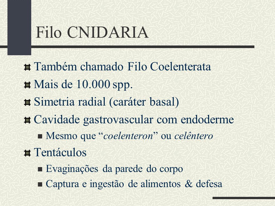 "Filo CNIDARIA Também chamado Filo Coelenterata Mais de 10.000 spp. Simetria radial (caráter basal) Cavidade gastrovascular com endoderme Mesmo que ""co"